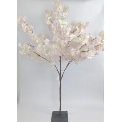Arbre cerisier rose H120