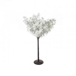 Arbre cerisier blanc H100