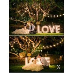 Lettre lumineuse LOVE