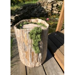 Urne tronc en bois