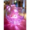 Vase boule D10